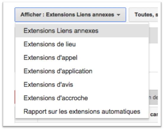 Sélectionner les extensions pour les campagnes AdWords