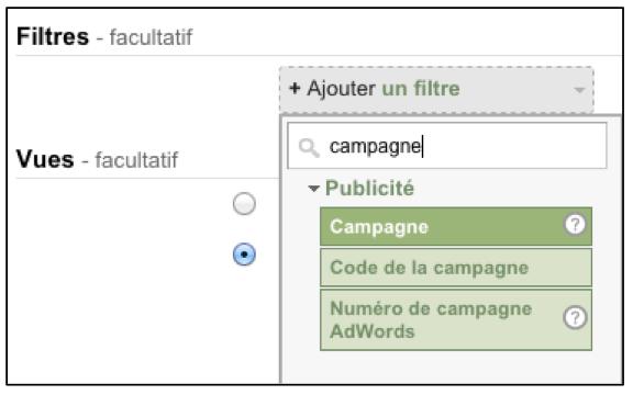 Sélection des filtres d'une campagne dans Google Analytics