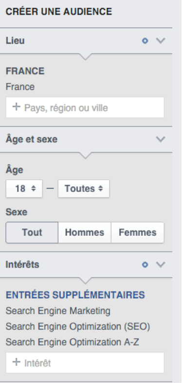 Créer son audience Facebook Ads.