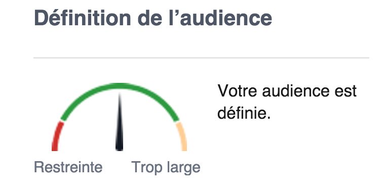 Définir son audience à l'aide de Facebook Ads.