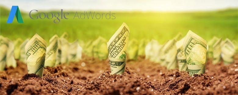 Rentabilité des campagnes AdWords