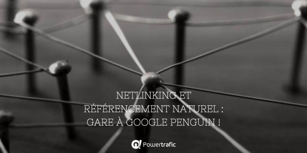 https://www.powertrafic.fr/netlinking-google-penguin/