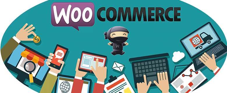 WooCommerce le plugin e-commerce de WorpressWooCommerce le plugin e-commerce de Worpress