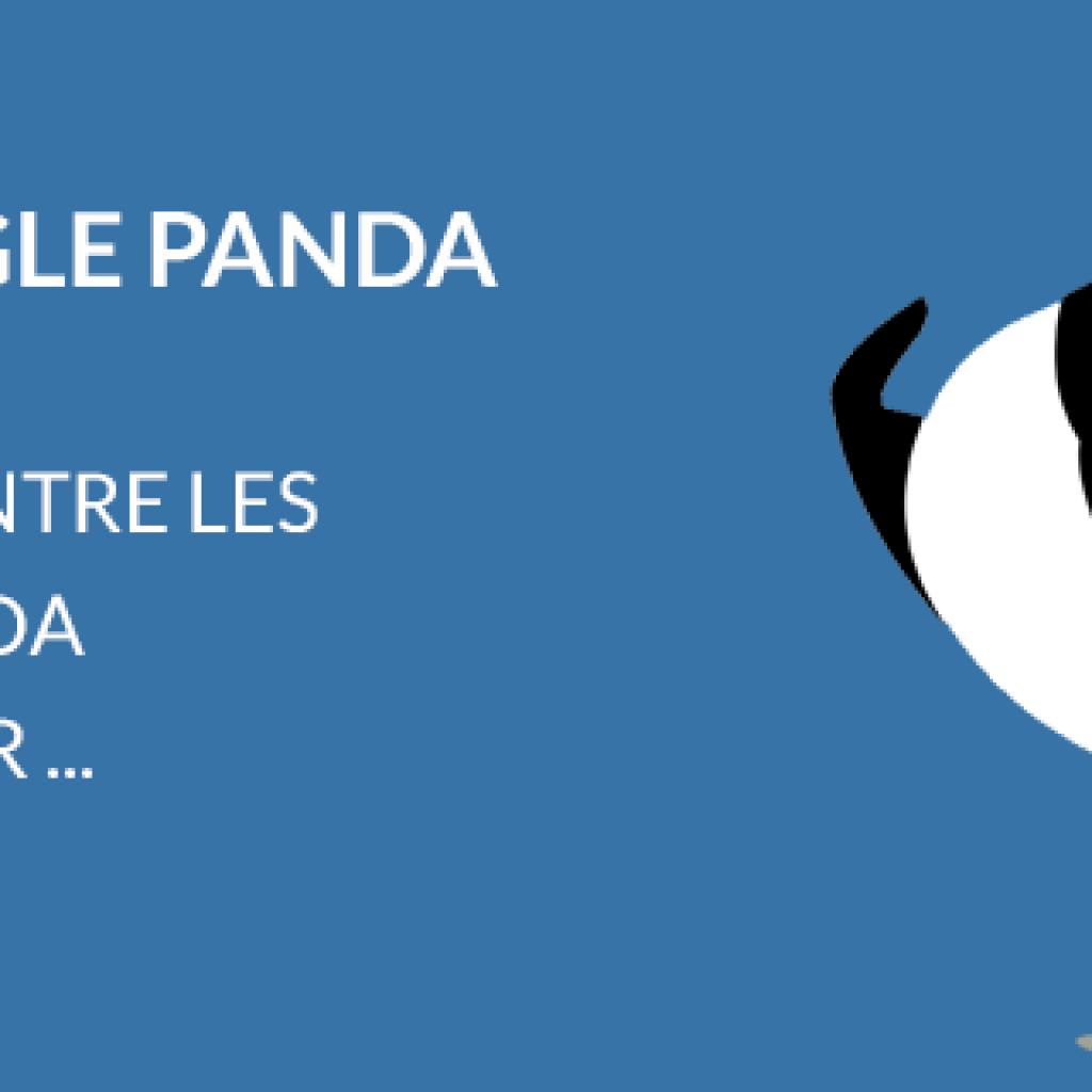 Audit Google Panda