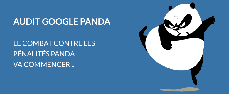 Audit Google Panda