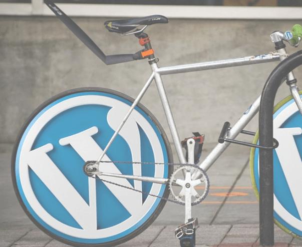 Le référencement naturel WordPress pour les nuls