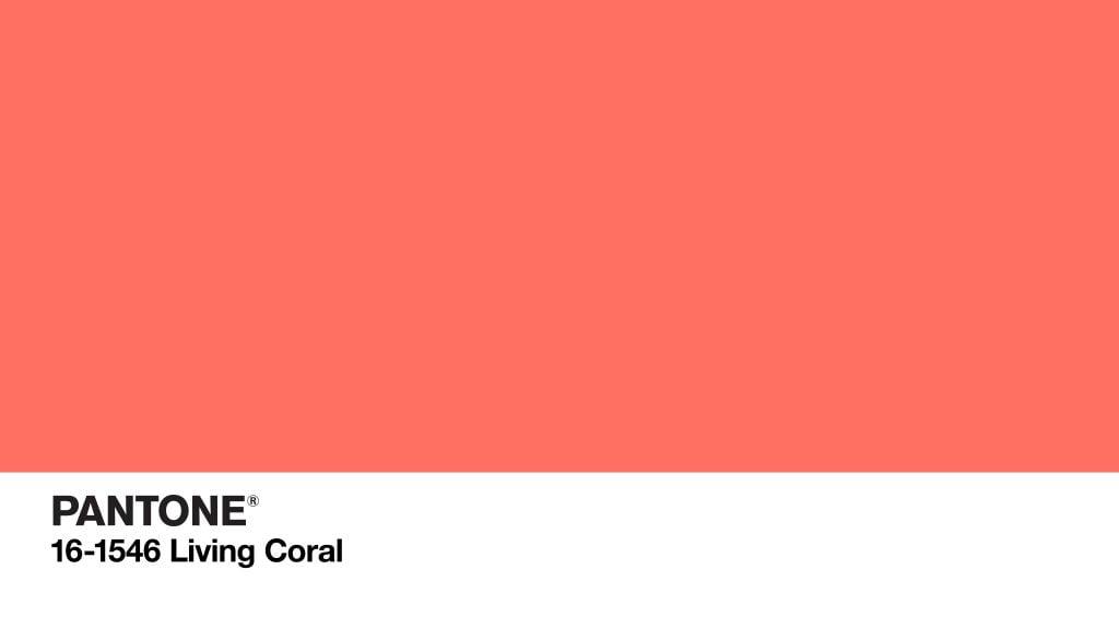 Le corail : élu couleur de l'année 2019