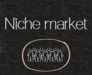 La stratégie digitale et les marchés niche