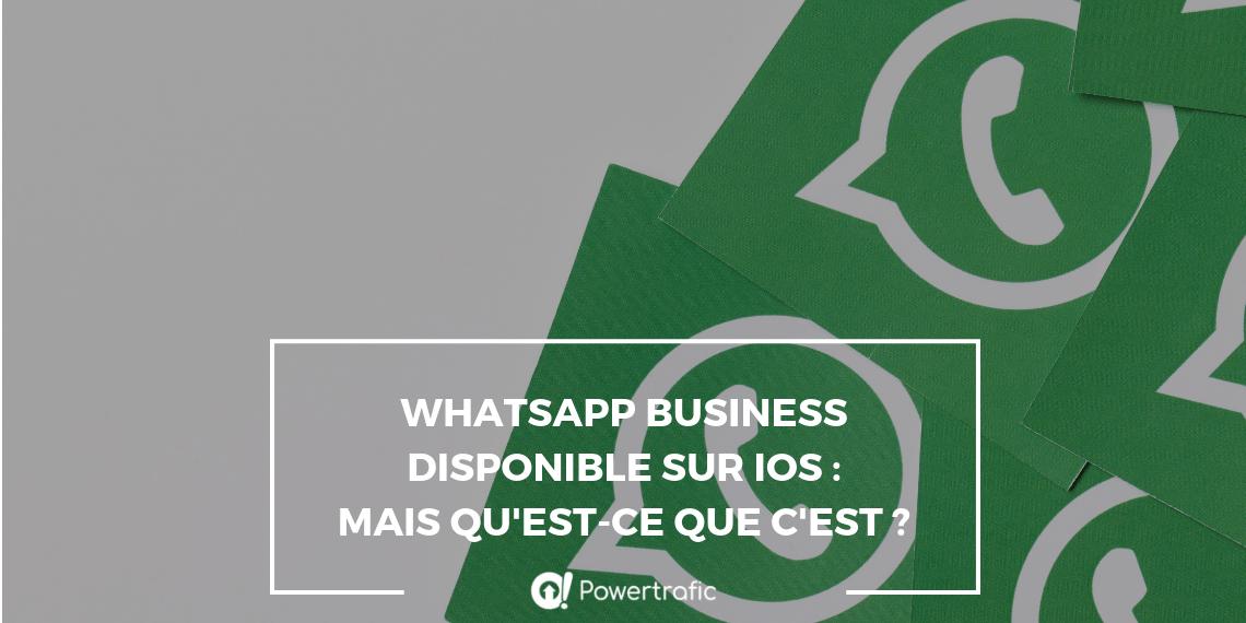 WhatsApp Business disponible sur iOS : mais qu'est-ce que c'est ?